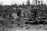 Turning point of the war: 1968 Tết Offensive