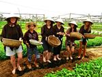 Travel firms, local leaders eye agri-tourism