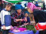 Tủa Chùa: Điện Biên's unpolished natural gem