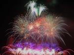 Belgium, Brazil debut at Đà Nẵng fireworks fest