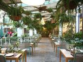 Ngon Garden opens today