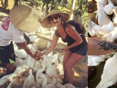 Try a duck massage in Quảng Bình Province