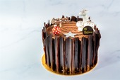 Praline Chocolate Log Cake