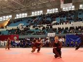 Vietnamese martial arts federation makes debut in Algeria