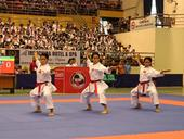 Karatekas dominate regional tourney