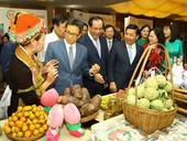 HCM City connects with Northeast region to revive tourism market