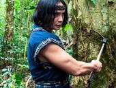 Thai, Vietnamese martial arts actors work on new film