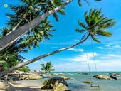 Hòn Sơn Island, ahidden gem in Kiên Giang