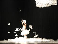 VNOB highlights contemporary dance