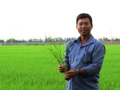 Đồng Tháp farmer profits from thinking big