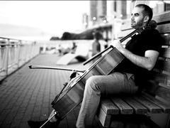 Đàn tranh - cello improvisation: When East meets West