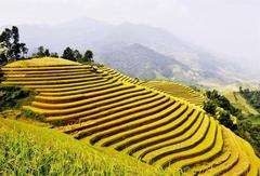 Photo contest dedicated to Hoàng Su Phì tourism kicks off