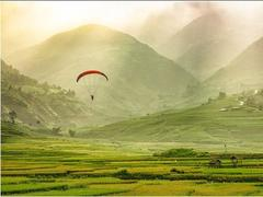 Paragliding festival flies over Mù Cang Chải terraced fields