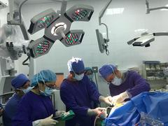 Awake brain surgery conducted for the first time in Việt Nam