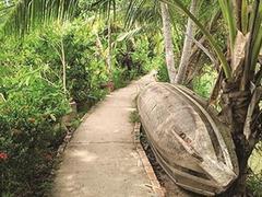 Cồn Sơn Islet achieves success in eco-tourismdevelopment
