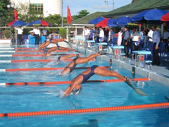 National finswimming champs to start in Hà Nội