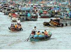 Conservation measures proposed for Cái Răng Floating Market