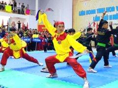 Traditional martial arts festival kicks off in Binh Dinh