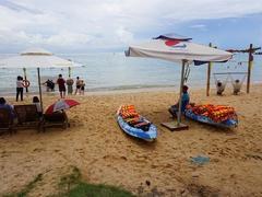 HCM City, Mekong Delta seek to co-ordinate tourism activities