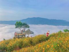 Explore new community-based tourism in Trà Vinh