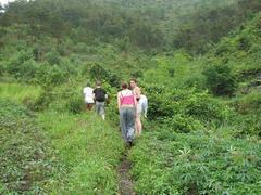 Cát Bà National Park offers thebest trekking options