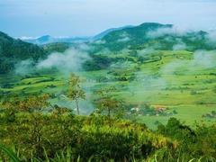 Discovering Vân Hòa Plateau in Phú Yên