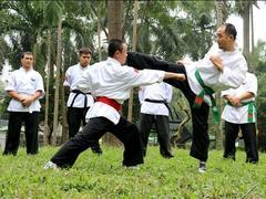 Martial arts master shares his skills