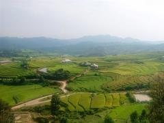 Lai Châu embraces community tourism