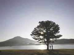 Romantic film reflects picturesque Đà Lạt city