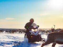 Layover in Arctic Circle