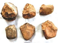 Traces of early humans found in Ba Bể National Park