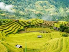Hà Giang tourism to be promoted virtually