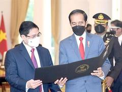 Indonesia-Việt Nam: decades of friendship and cooperation