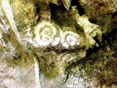 Prehistoric drawings found in Nghệ An