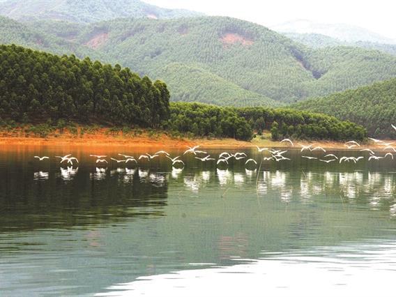 Peaceful charm ofThác Bà Lake